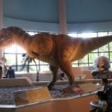 【台中】長知識的自然科學博物館‧來看恐龍了